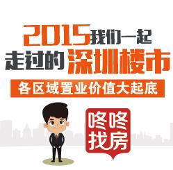 2015咚咚陪你走过的深圳楼市