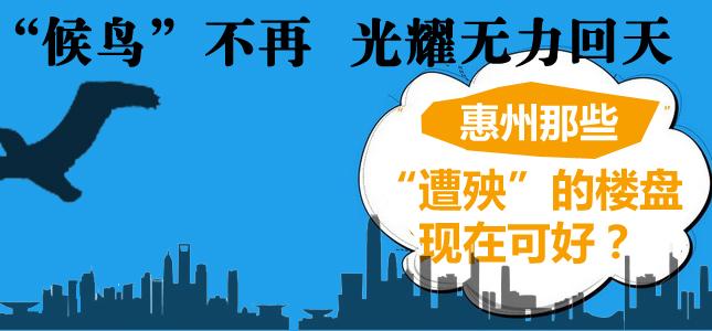 """""""候鸟""""不再光耀无力回天 惠州那些""""遭殃""""的楼盘现在可好?"""