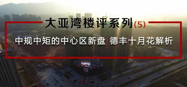 大亚湾楼评系列(5):中规中矩的中心区新盘 德丰十月花解析