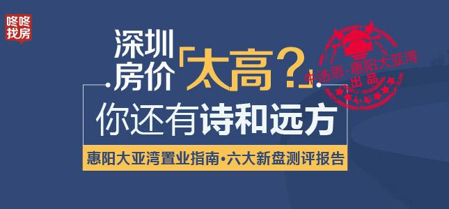 惠阳大亚湾置业指南·六大新盘测评报告