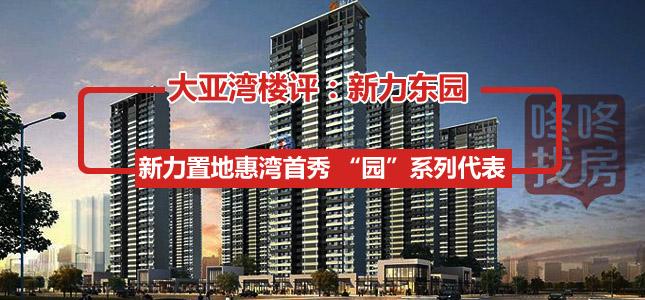 新力东园首批将推1、3、5栋共396套,预计价格为1.3万